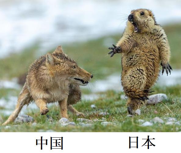 これが、今の中国と日本の状況ですよね?