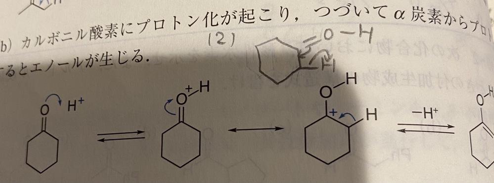 エノールのでき方について、 参考書では写真のように書かれていますが、 私は写真の(2)のように書きました。 これは間違っているのでしょうか?