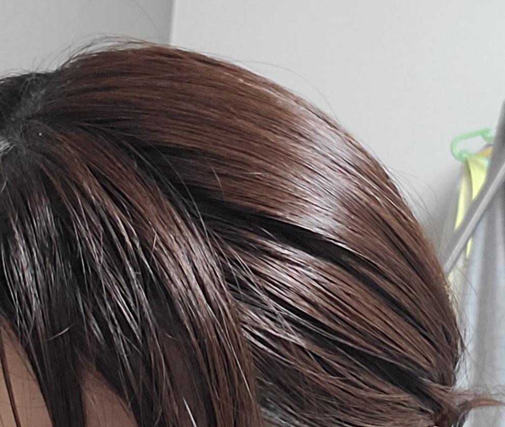 バイトについて質問です 髪色自由の所に応募しようとしたのですがもう終わっていて出来ませんでした ココスやガストなどのチェーン店でもこの髪の色は大丈夫ですか?