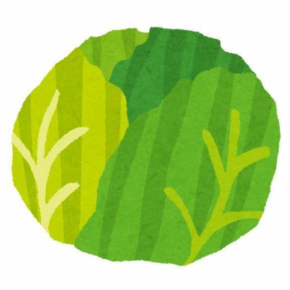キャベツの好きな食べ方を教えてください https://ja.wikipedia.org/wiki/%E3%82%AD%E3%83%A3%E3%83%99%E3%83%84