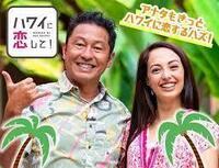ハワイに恋してについて、なぜ日本人は物価の高いハワイが好きなのですか?  同じ金額使うならオーストラリア、ニュージーランド、 インドネシアのバリ島が何倍も豪華に過ごせます。 ハワイの魅力はなんですか...