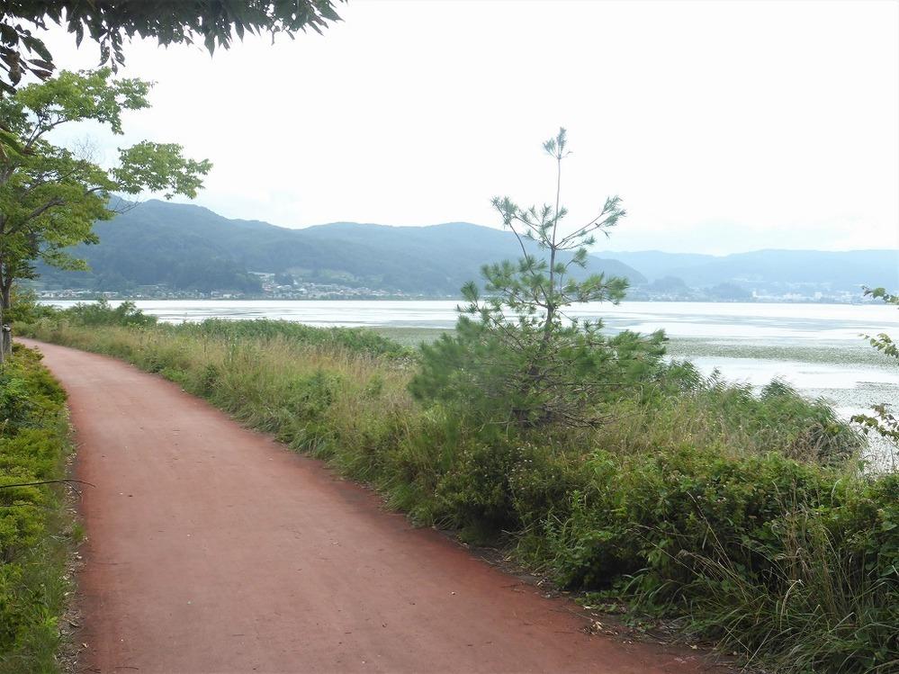 何処かわかるでしょうか? 各地をサイクリンするのが好きで、過去のサイクリングの写真ザッとを集める中で、何処で撮ったのかわからなくなった写真が2枚出てきました。 何処かの湾なのか、それとも沿岸に島が近い海岸沿いのサイクリングロードのようですが、わからなくなってしまいました。