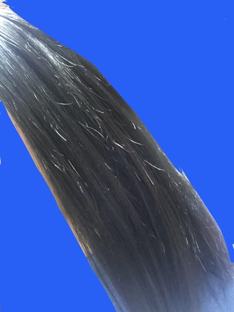 写真のような髪のヘアケアアドバイスをください! 写真のように、髪の毛の数本がちぢれて?います。どのようなヘアケアをすれば治るでしょうか。 ・縮毛履歴過去に一回あり(2ヶ月前) ・髪染め、ブリーチ歴なし 現在のヘアケア 夜シャンプー(ラックスモイスチャライザー)→トリートメント(モイスチャライザー)後に木櫛でとく→タオルドライ→ヘアクリーム(ルシードエル)→ドライヤー 朝ヘアオイル→たま...