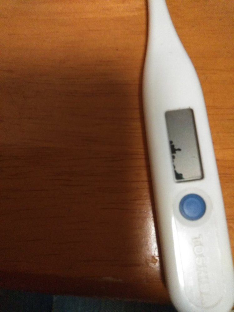 この体温計は電池を交換したら使える可能性はありますか? 液晶が少し黒くなっています。