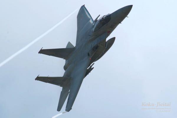 発達障害(ADHD)の人が防衛大に入ってその後航空自衛隊の戦闘機パイロットになったなんて話聞いたことありますか?