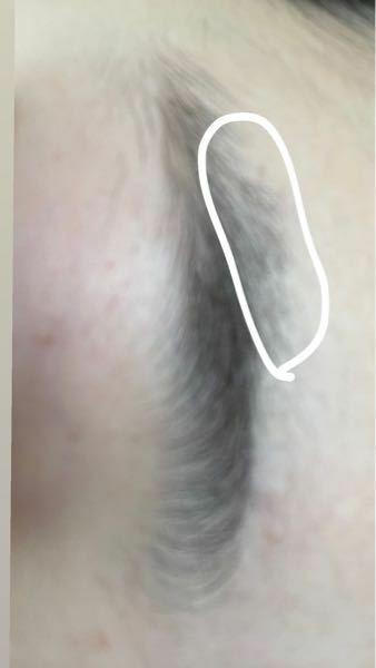 眉毛の整え方についてです。 私の眉毛は目尻が太いです。 上側にモワッとって感じです。 前整えようとして 下も上も剃ったのですが 上側を剃ったら 剃ったで 黒っぽく目立つのです。 生えてても目立つし 剃っても目立つので困っています。抜くのはやはり痛いような気がしますが 抜く方が良いのならばそうしようと思います。 どうすればいいのでしょうか