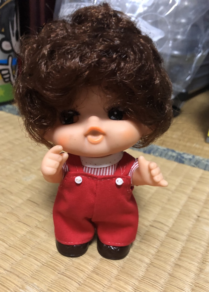 この人形の名前わかる方いますか?(´`)