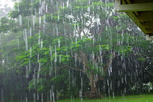 ★ 夕立 にわか雨 で思い浮かぶ歌は?