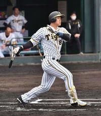 阪神タイガースの佐藤輝明は最終的には 何本ぐらいホームランを打つでしょうか? 「現役の通算」です。 500本ぐらいでしょうか?