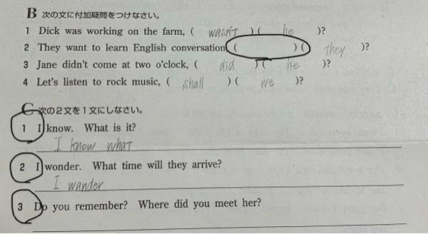 付加疑問文と間接疑問文の問題です。 写真の通りこの状態から全く分かりません。 〇の部分を教えてくれると嬉しいです。