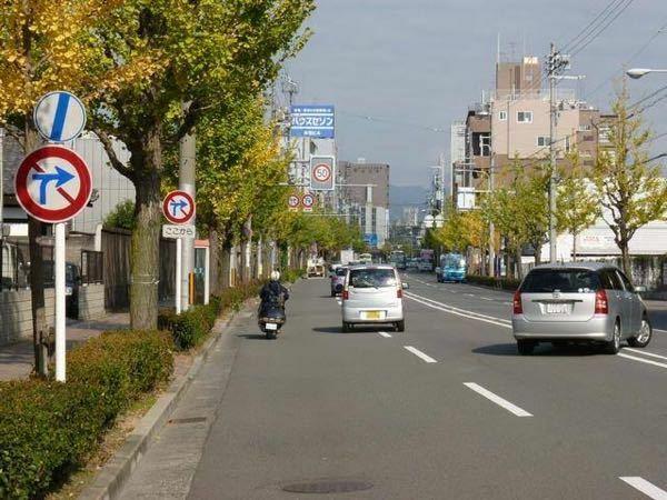 画像の右の車の位置で横断したら違反ですか?