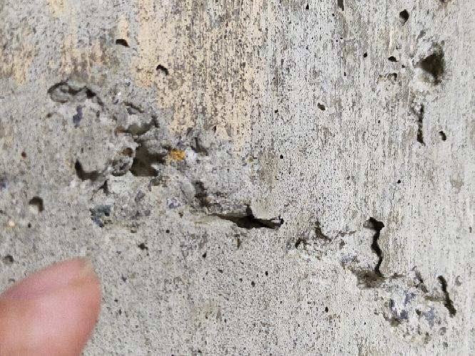 打ちっぱなしのコンクリ壁があります。キレイに薄いセメントを貼って塗装を考えています。下処理にハイモル等を考えています。手順をアドバイスお願いします