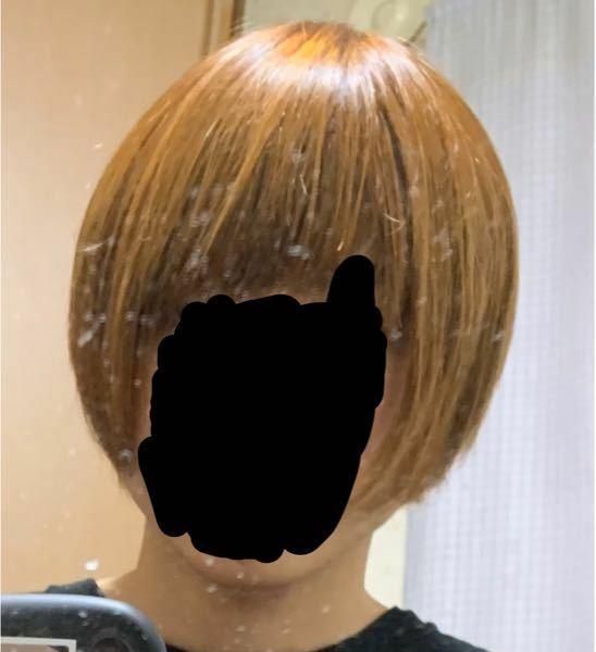 若い女性に質問です。 男でこの髪型はどう思いますか?