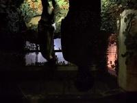 この画像は心霊写真でしょうか? アイホンでナイトモードで撮影しました。