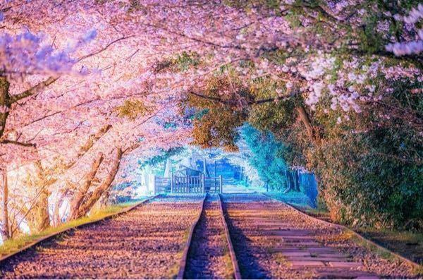 インスタでフォローしてる方が撮った写真なのですが、ここどこかわかる方いますか?京都かそこら辺だと思うのですが、場所は書いてなくて、DMで質問してみたんですけど返ってきませんでした
