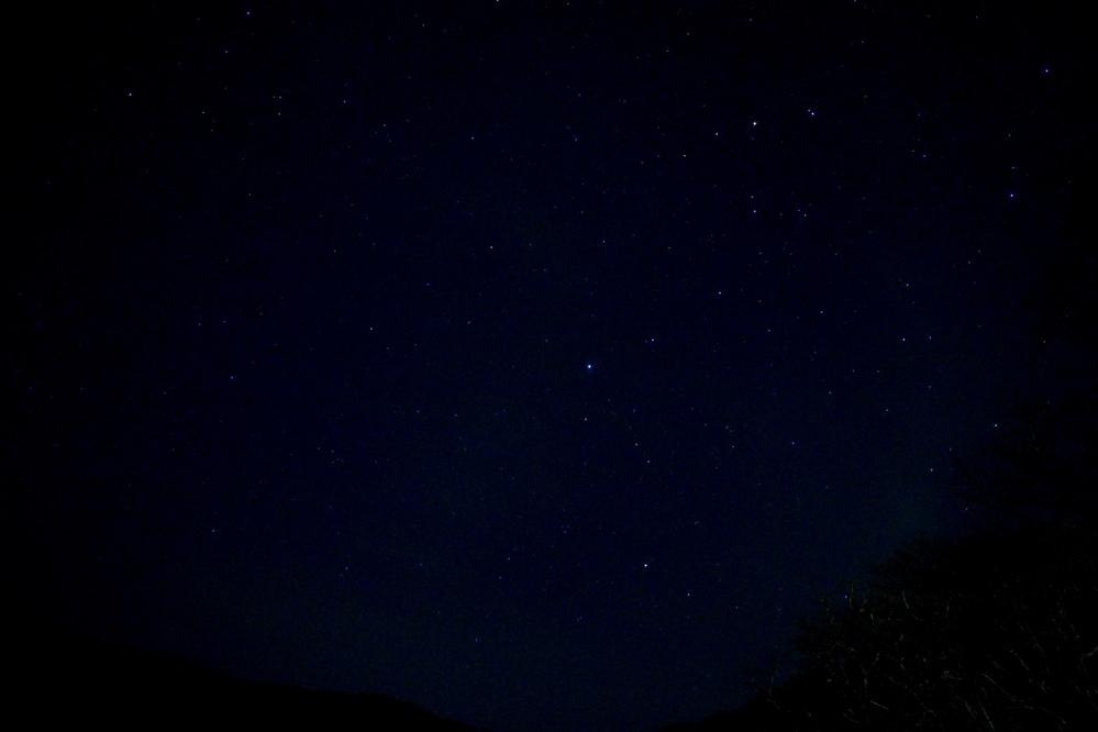 星座の確認をしたいのですが、 この写真は小熊座で中心の白い星は北極星でしょうか?