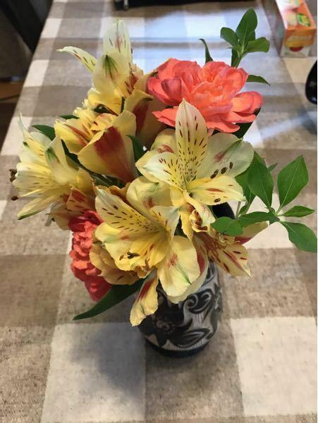 この中にある黄色っぽい花の名前がわかりません。教えて下さい。また自家栽培できますか?