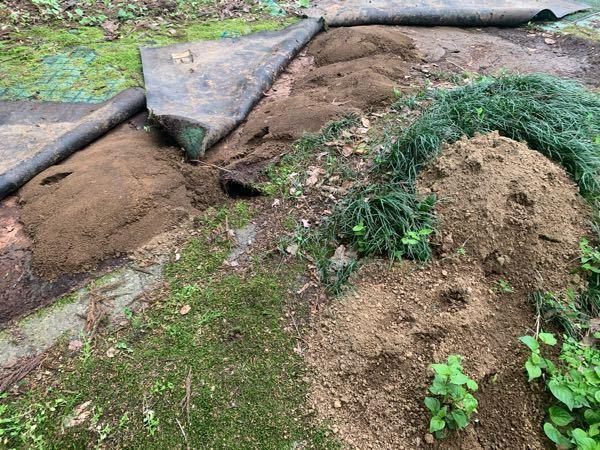 謎の砂山について質問です。 この砂山、庭の至る所に大量発生しており、 日に日に増えていっています。 土質は割と細かくぽろぽろという感じで、 大きさは、ひとつ30〜40㎝ほどです。 動物が作ってい...