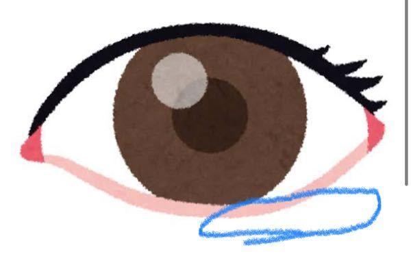 マスカラをしてしばらく経つと、青で囲ったところが茶色くなってしまいます。 マスカラがうつっちゃうんですけど、どうしたら防げますか?