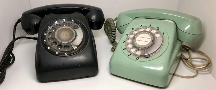 電話の形に似た虫っていますか?