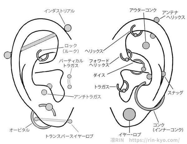 ピアスについて。 アウターコンクとスナッグを開けたいのですが、軟骨用のピアッサーで開けれますか? また、耳たぶや、オーソドックスな軟骨以外の位置にピアスが開いてる女性をどう思いますか?