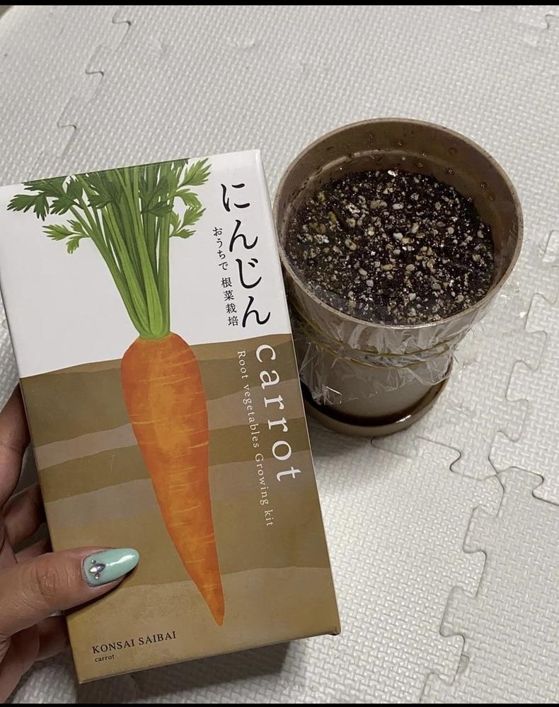 6日前に栽培キットにんじんをかったのですが 今の器でやってそのうち鉢を変えたほうがいいのでしょうか? それに変えたところで肥料とか何使えばいいのか分からないです。 とりあえずこのままでいい感じでょうか? もう芽は でてます