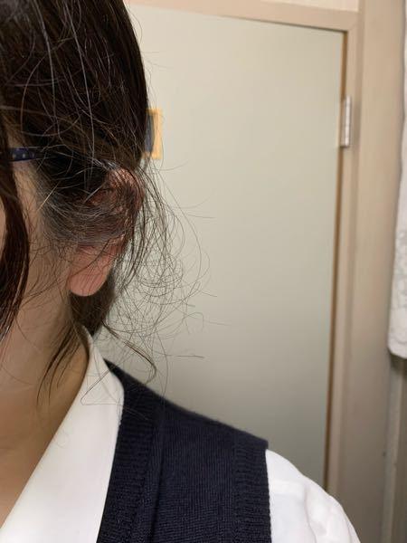 どうすればいいですかね…?? 櫛でといてもといても一時したら横の髪がこんな風にチリチリになっています。本当にうんざりです ストパーは、お小遣いの関係上出来ません。なにかこのチリチリが良くなるいい方法あったら教えていただきたいですm(*_ _)m