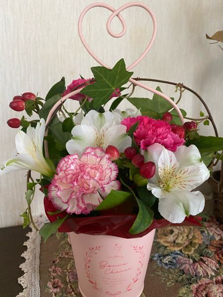 この写真の花の名前を教えて下さい。