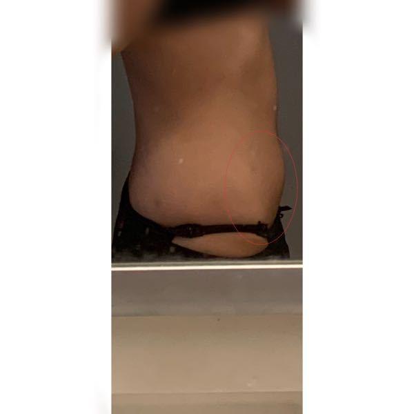 皮下脂肪について。 ダイエットをしており目標体重まで後1kgです。 身長156cmの41kgなのですが、画像の赤丸の下腹の皮下脂肪が中々落ちません。 筋トレも有酸素運動もやっており週に4.5回ジムに行っています。 食事制限もしておりオーバーカロリー、脂質等の取りすぎでは無いと思います。 上腹部は筋肉がついてきて皮下脂肪薄くなりましたが、やはり下腹は座ると目立つし立って横に向いても目立ちます。
