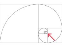 黄金比を使ったカメラ撮影について質問です 写真の中で、1番見せたい部分を黄金比のクルクルした線の最終の所に合わせて撮れば綺麗に見えるんでしょうか  クルクルの最終の所って言うのは、画像のとこです