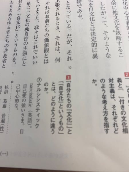 高3現代文の文化が違うとは何を意味するのか?という評論ですが、◻︎3の答えがわかる方いませんか??