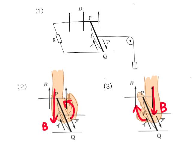 物理の問題についてです。 初歩的な問題なのですが、考えているうちにわからなくなってしまったので質問させてください。 画像の(1)のように、コの字型の導線に磁束密度Bがある場合を考えるとき、導線PQを通る電流の向きは、誘導起電力がはたらくため、(2)のように右ねじの法則からP→Qとなるというのが回答なのですが、(3)のように、右手を右側において考えないのは何故ですか?