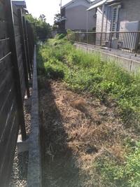 我が家の土地とお向かいの土地の間にある水路の脇の草に除草剤かけても大丈夫でしょうか? 我が家の土地とお向かいの土地の間が2m程空いていて、中央に水路があります。 我が家は写真の左側です。 この水路は以前は田んぼだった所が住宅用に造成された時に作った水路だと思います。 現在は下水が通っていますが、私が家を建てた時はまだ通っていなかった為、我が家他数件は浄化槽で、その排水や雨水用の水路です...