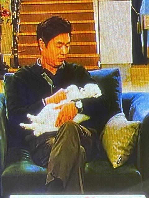 このドラマに最初から出ている、柴犬カットの白ポメですが 最初のころは、だっこされている腕の中でジタバタ動いていましたが 回が進むにつれ動かなくなり、最近はいつもこのスタイルです。 (死んだふり?) あまりにもいつも抱っこされっぱなしなので、この犬は自分の意志で 動くことを諦めたのですか?