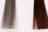 色素薄い系の茶色い髪に憧れます。私も一応茶色なんですが、画像の右のような茶色です。でも色素薄い系の友達は左に近い茶色で、とても羨ましいです。これは何による違いなんでしょうか?もし少しでも左に近づける方 法があれば教えてください。