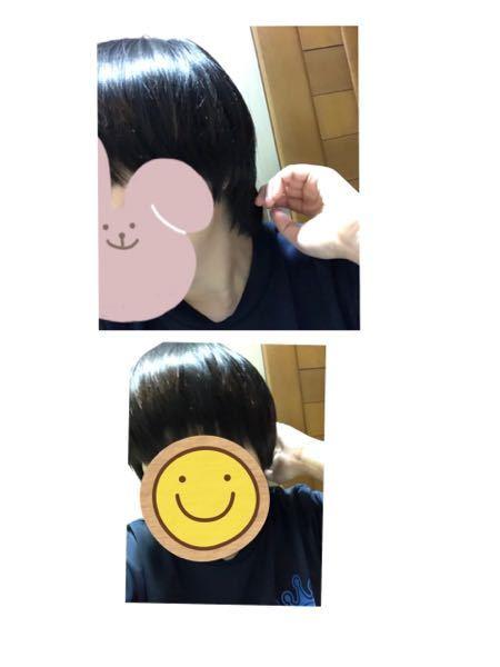 髪の毛ついて相談です。4月7日に髪をきってから約二か月になりもさってしまっています。 もともと髪の量が多い気がしていて、美容師さんにも髪の毛おおいねといわれます。いちよ短いですが、女性です。上司に、頻繁に切れ切れ言われるので、切ろうとおもうのですが、少し髪の毛を伸ばしてみようとおもっています。どのようにしていけばよろしいか教えて頂きたいです。