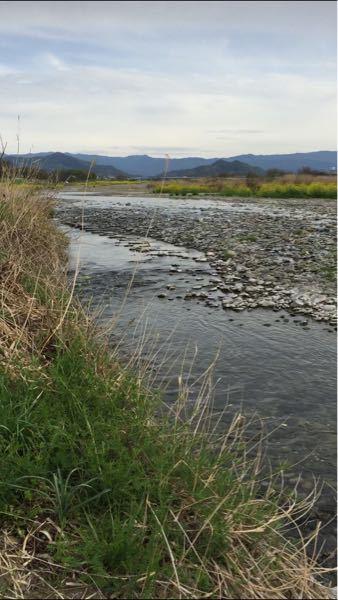 川について 「香川県丸亀市の土器川について」 2016年の頃に撮影した写真です( ⚯ ) いつか香川に帰省した時、川に遊びに行きたいと思ったのですが、近くには土器川ぐらいしかありません。 この川は上流の方に行っても綺麗になったり魚が増えたりとかしませんか? 家の近くの土器川にしかいったことがないので、海の反対、山側の土器川の情報が知りたいです!! あと、釣りはしてもいいんですか?