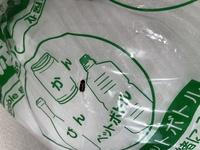 虫が苦手な方は画像注意です。  これってゴキブリの赤ちゃんでしょうか? 詳しい方教えて下さい、、、。