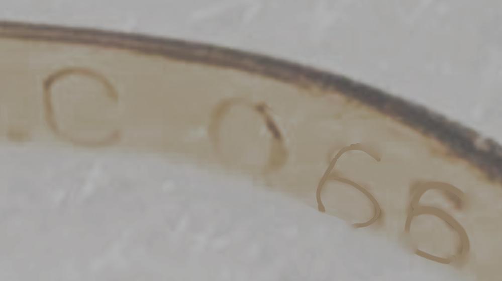 リングのk18WG C 066の意味は? k18WGは18金のホワイトゴールドということはわかるのですが C 066がなんの宝石をさすのかわかりません 透明でキラキラしてます 刻印部分の写真です 見やすいように数字をなぞってます