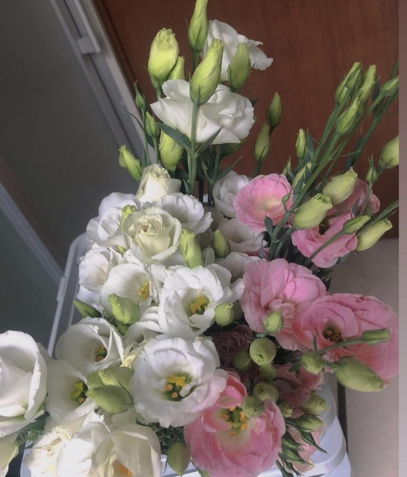 このお花の名前わかる方教えてください!
