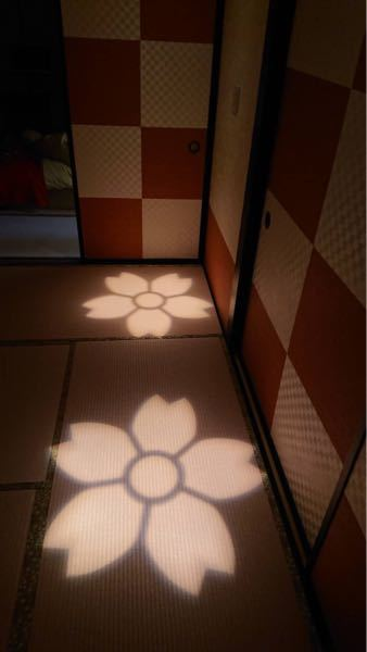 サクラなどのお花の形に照らすことのできるライトは何というライトですか?