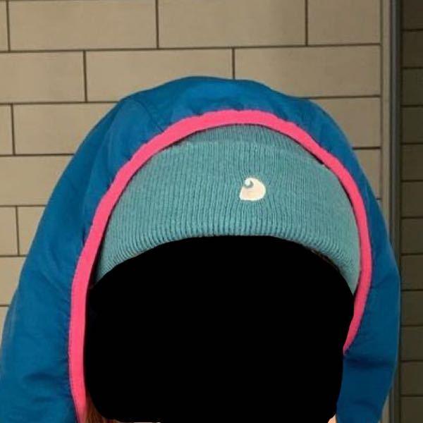 おそろくカーハートだと思われるこのニット帽はどこに売ってる?