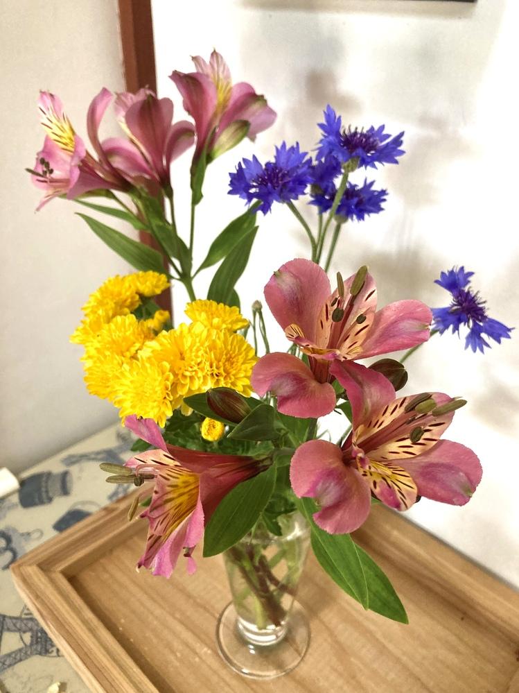 写真のピンクの花の名前を教えて下さい。 草丈は60〜80cmぐらい。 宿根草で毎年咲きます。