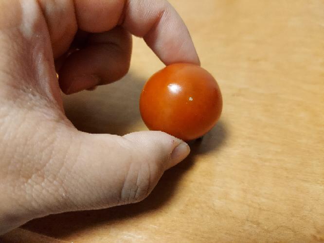 収穫したプチトマトに白い斑点が出来てしまっていたのですが、食べられるでしょうか?