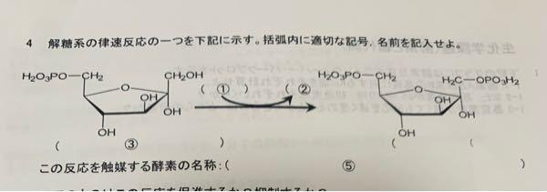 解糖系のこの問題が調べても教科書にもなくてわかる方いらっしゃいませんか??