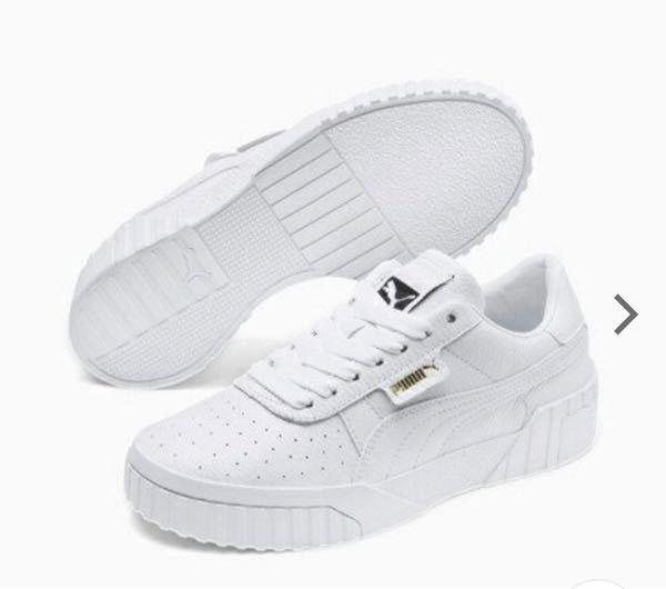 普段24.5を履いているのですが(VANS)下の写真の靴も24.5で大丈夫でしょうか?