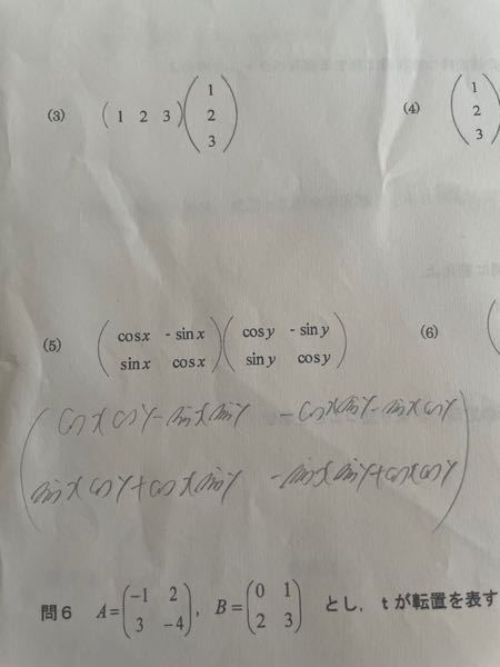 写真にあるベクトルと行列の演算の問題の(5)を自分なりに解いたのですが合ってますでしょうか?