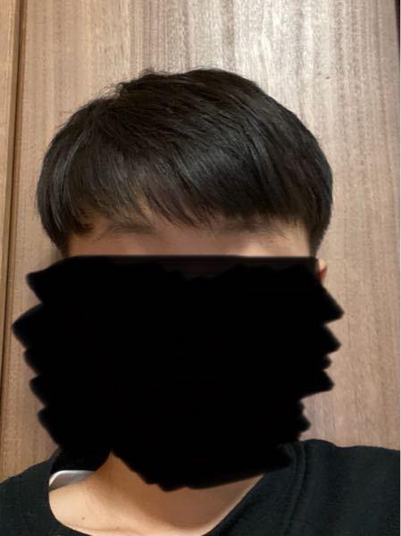 高校2年生の男子です。散髪で失敗して、坊ちゃんぽくなりました。対処法とかありますか?ちなみにこんな感じです。