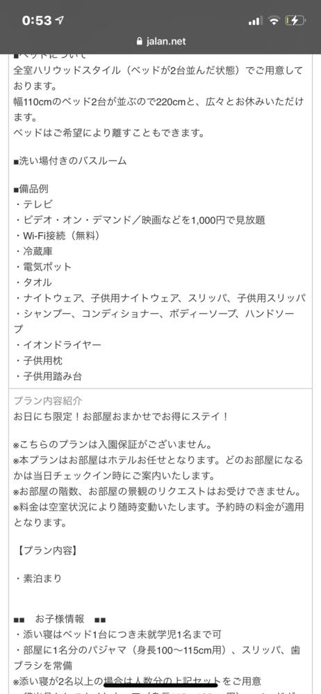 東京ベイ舞浜ホテルのこのプランを予約しようか迷っているのですがこのプランだと「入園保証なし」なのでチケット買えませんか??