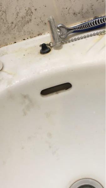 ゴキブリが出たのですが、洗面台の写真の穴のところから触覚が見えるだけで、なかなか外に出てきてくれないので、どうすればいいか分からなくなってます。 この場合どうすれば良いのでしょうか?